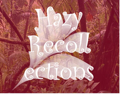 hazy-recollections-web